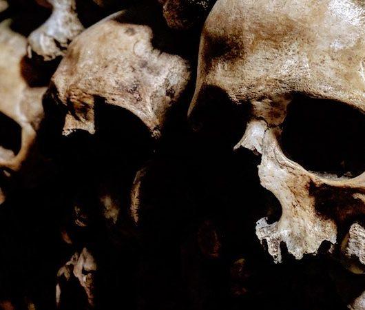 7 Steps to identify family skeletons
