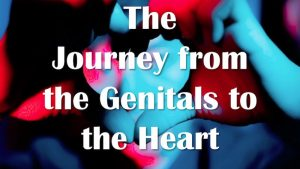Journey from the Genitals to the Heart