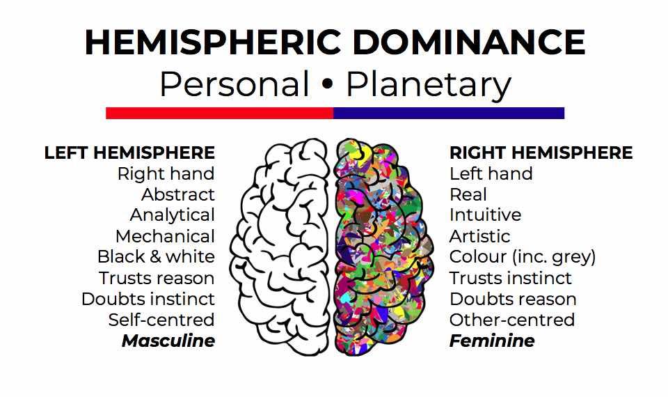 Hemispheric dominance